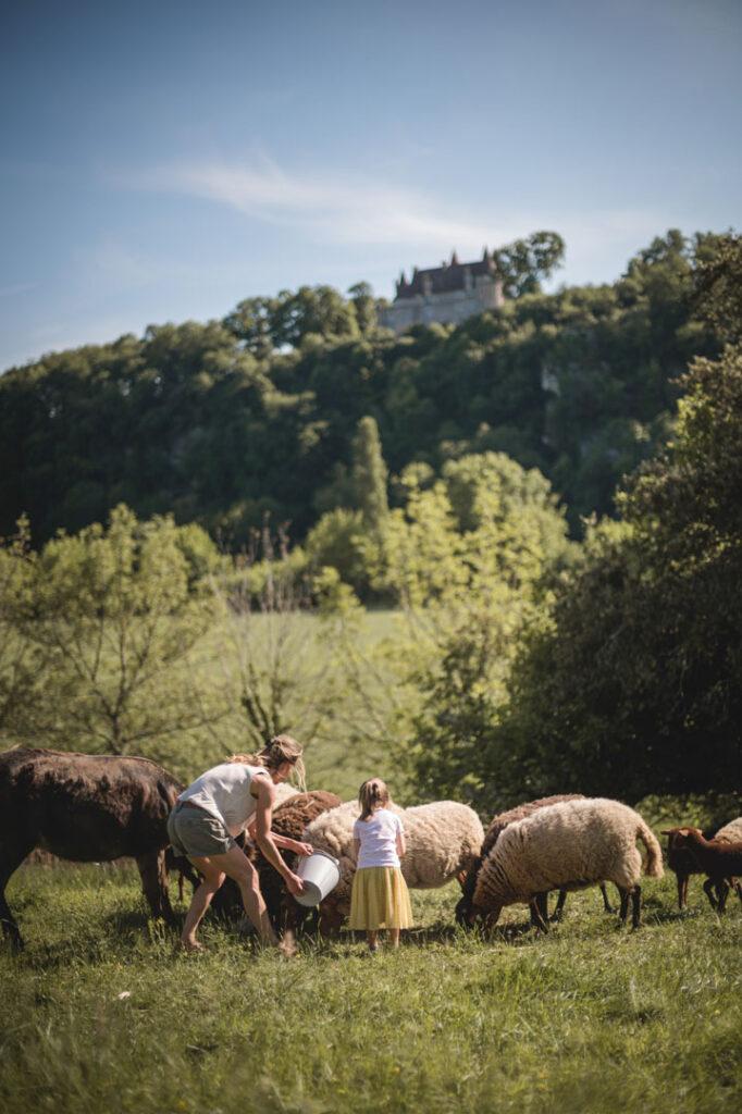 Visite_de_la_ferme_des_paysans_de_la_madeleine_animaux_potager_jardin_médicinal